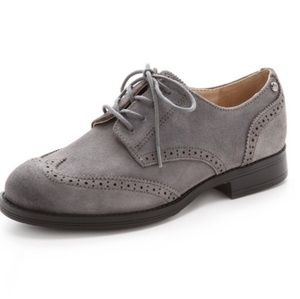 Sam Edelman | Gray Suede Irving Oxford Shoes Laced